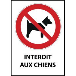 """Panneau d'Interdiction """"Interdit aux chiens"""" Vinyle souple A5"""