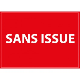 "Signalisation ""Sans issue"" Dimensions:210 x 150 mm ou 420 x 300 mm"