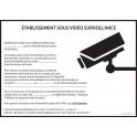 Affiche obligatoire - Etablissement sous vidéosurveillance - A4 - Rouge - Dématérialisé PDF