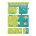 """Poster """"Comment bien se laver les mains"""" - A4 - Dématérialisé PDF"""